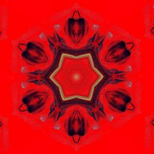 chakra-685008_1280 (2)