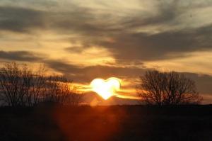 heart-570962_1280 (2)