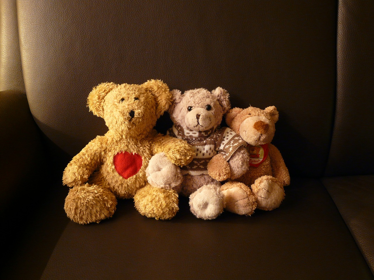 relationship problems in the bear came Major challenges exist in maintaining the declining rates of hiv  relationships  sustain hiv transmission in the general population [42.
