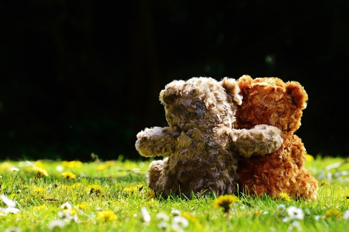 teddy-1361396_1280